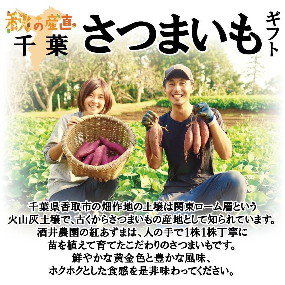 【9月下旬頃配送開始】千葉県香取市 酒井農園のさつまいも 酒井農園の紅あずま Mサイズ/約5kg(20本前後)【予約販売】