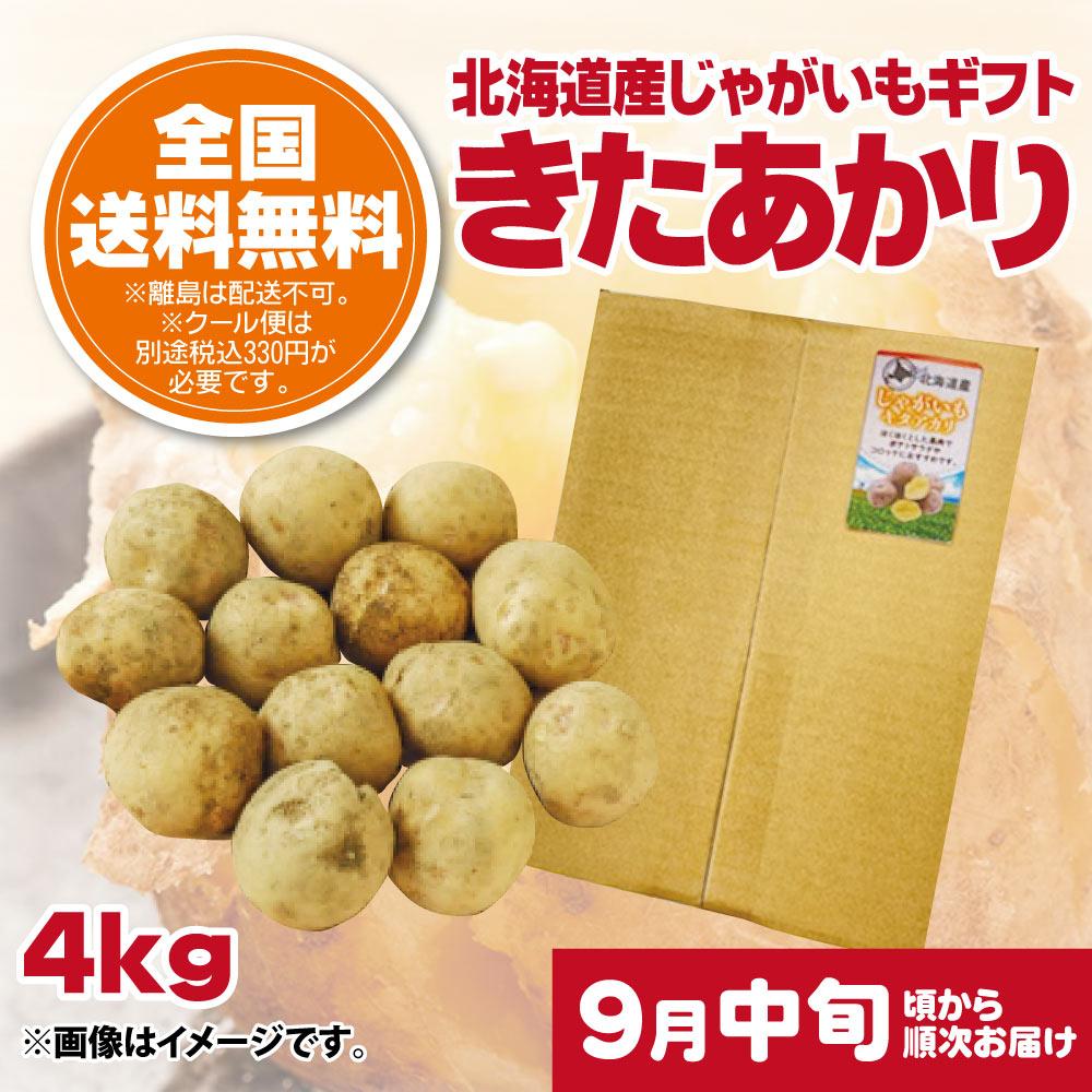 【9月中旬頃配送開始】北海道産じゃがいもギフト きたあかり 4kg【予約販売】