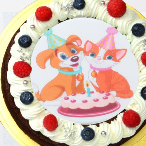 《キャラクタープリントケーキ》蒸し焼きショコラ