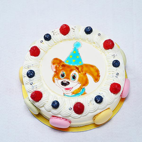 マカロン キャラクターイラストケーキ