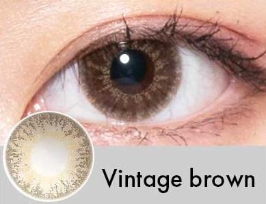 【度あり・度なし】Vintageブラウン(1年)