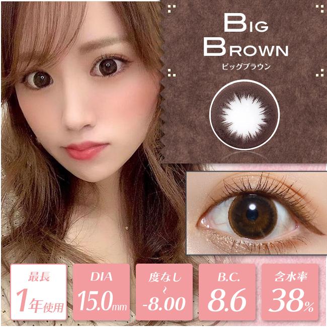 【度あり・度なし】BIGブラウン(1年)