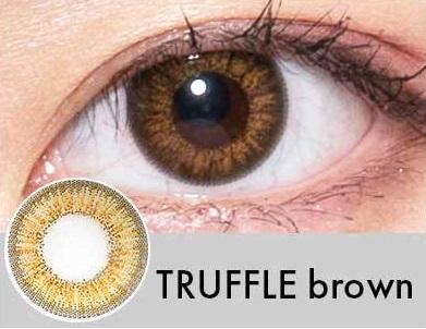 【度あり・度なし】TRUFFLEブラウン(1年)