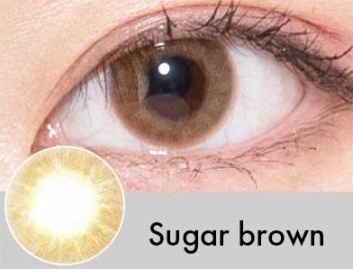 【度あり・度なし】Sugarブラウン(1年)