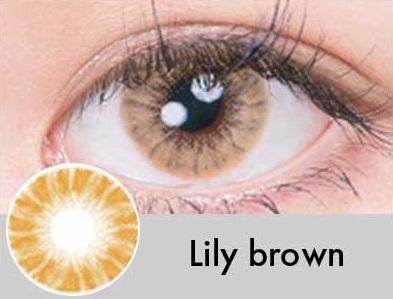 【度あり・度なし】Lilyブラウン(1ヶ月)
