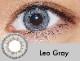 【度あり・度なし】Leoグレー(1ヶ月)
