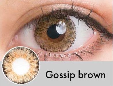 【度あり・度なし】Gossipブラウン(1年)