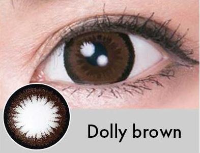【度あり・度なし】Dollyブラウン(1年)