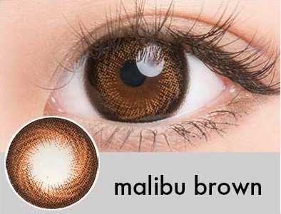 【度あり・度なし】Malibuブラウン(1年)