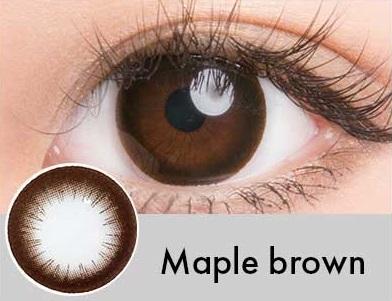 【度あり・度なし】Mapleブラウン(1年)