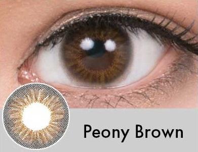 【度あり・度なし】Peonyブラウン(1年)