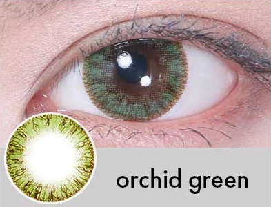 【度あり・度なし】Orchidグリーン(1年)
