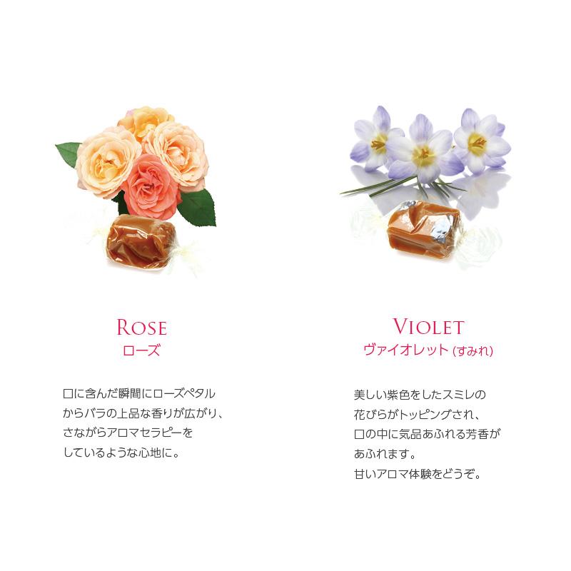 【 マリーアントワネット × ルドゥーテ 】 キャラメル8粒