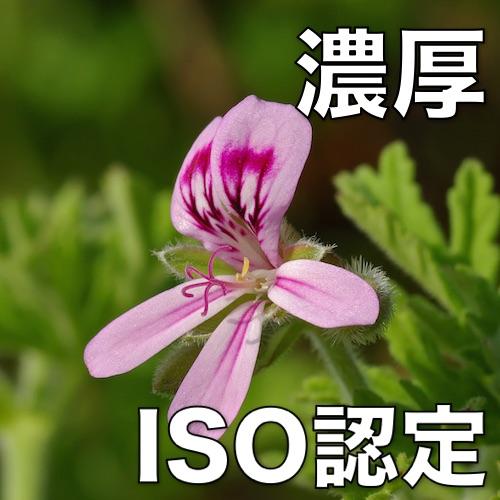 【ゼラニウム】 100%天然精油 10mL (ISO:4731 認定)