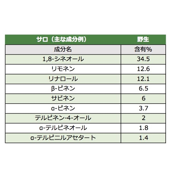 【サロ】 100%天然精油 10mL (固有植物:野生)