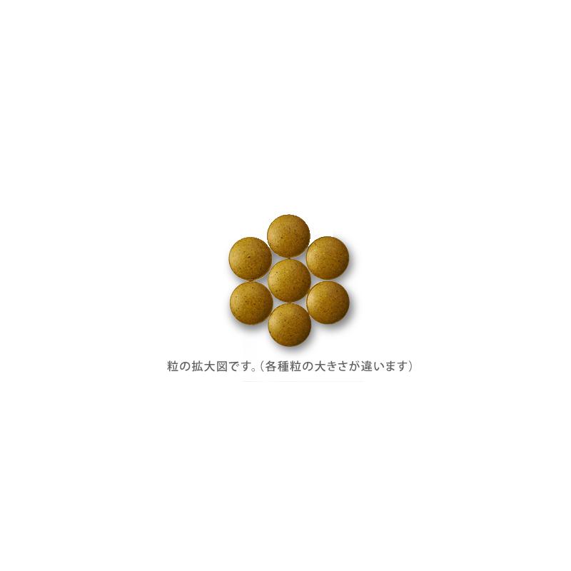 """【サプリ】日本初のアーユルヴェーダサプリ「tula」""""防御系MUKTI(ムクティ)"""