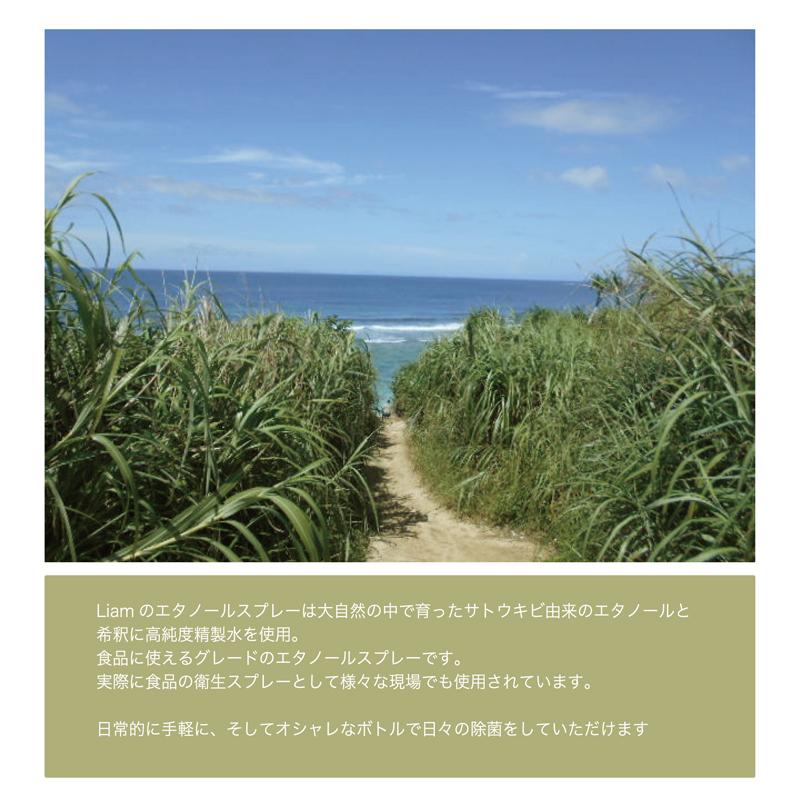 ◆アウトレット◆ エタノール濃度75%  除菌 スプレー 200ml 日本製 【北海道・沖縄・離島 配送不可】