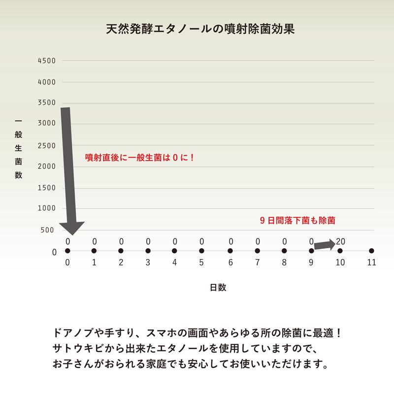 エタノール濃度75%  除菌 スプレー 250ml 【北海道・沖縄・離島 配送不可】