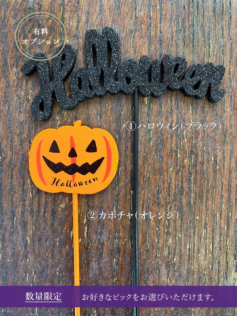 【10月限定アレンジメント】Halloween arrangement -ハロウィン アレンジメント-|Sサイズ