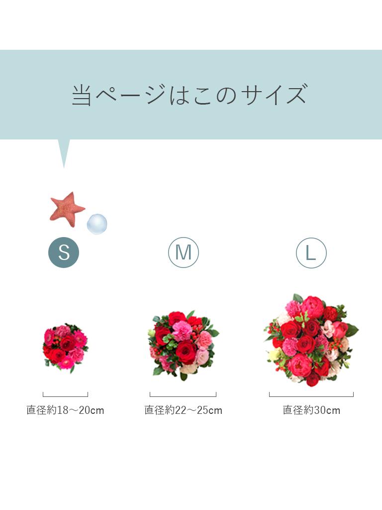 【母の日限定商品】トラディショナルアレンジメント [ルージュ・ローズ]|Sサイズ