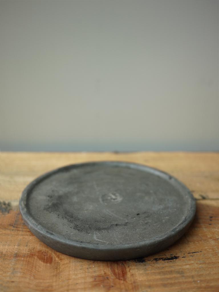 【一点もの】パキポディウム ロスラーツム 陶器