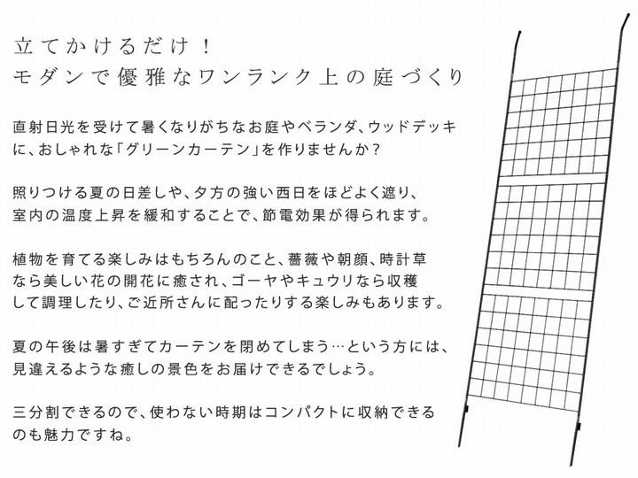グリーンフェンス 幅80cm 2枚組 アイアン製グリーンカーテン グラフ IFGC014-2P-SLV ※北海道+1100円