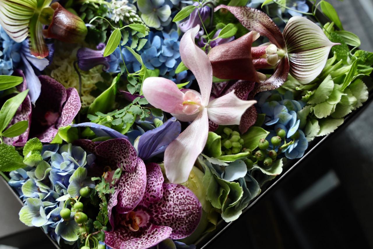 碧空 hekikuu 6月の花 季節限定の青色ハイドランジア [June flower] [Box Flower 27cm] #002
