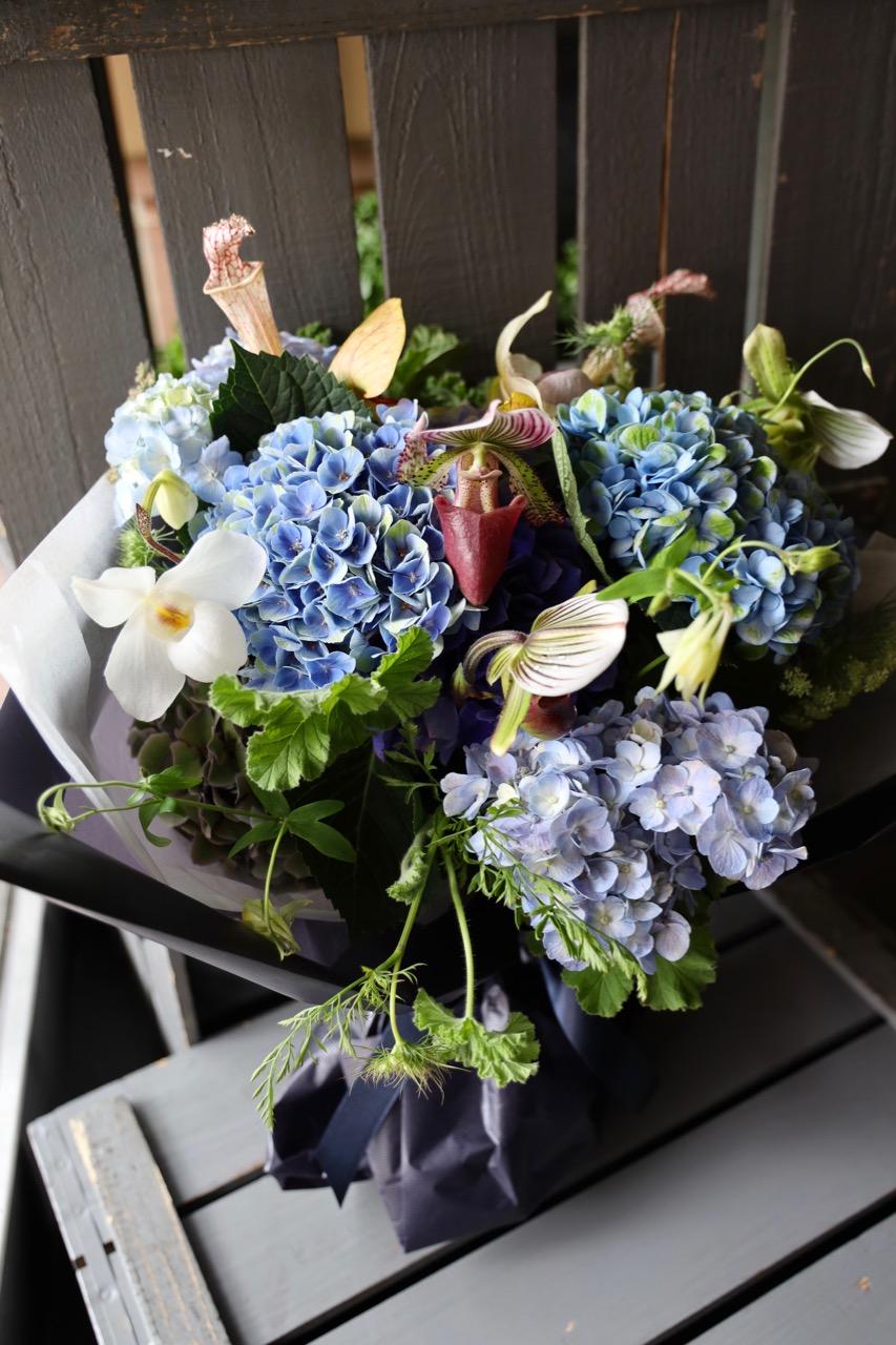 碧青 hekisei【6月の花】季節限定の青色ハイドランジアとパフィオで個性的に[ 花束 2L size ] #002