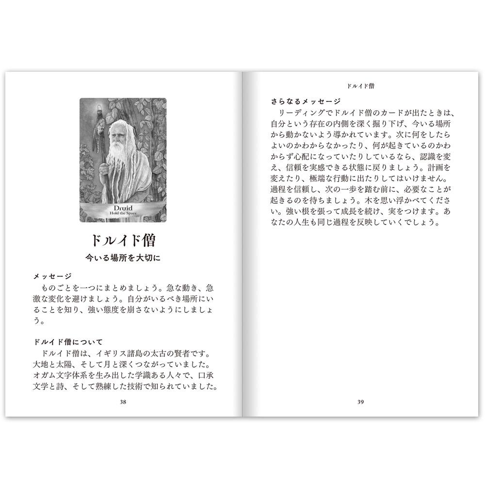 【セット割引】『エンジェルズ&アンセスターズオラクルカード』&『オラクルカードポーチ』セット