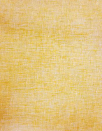 トゥールーズ・シャンブレー : Yellow(着分用)