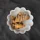 PILLIVUYT _ パティスリー ラウンドケーキモールド 20.8cm