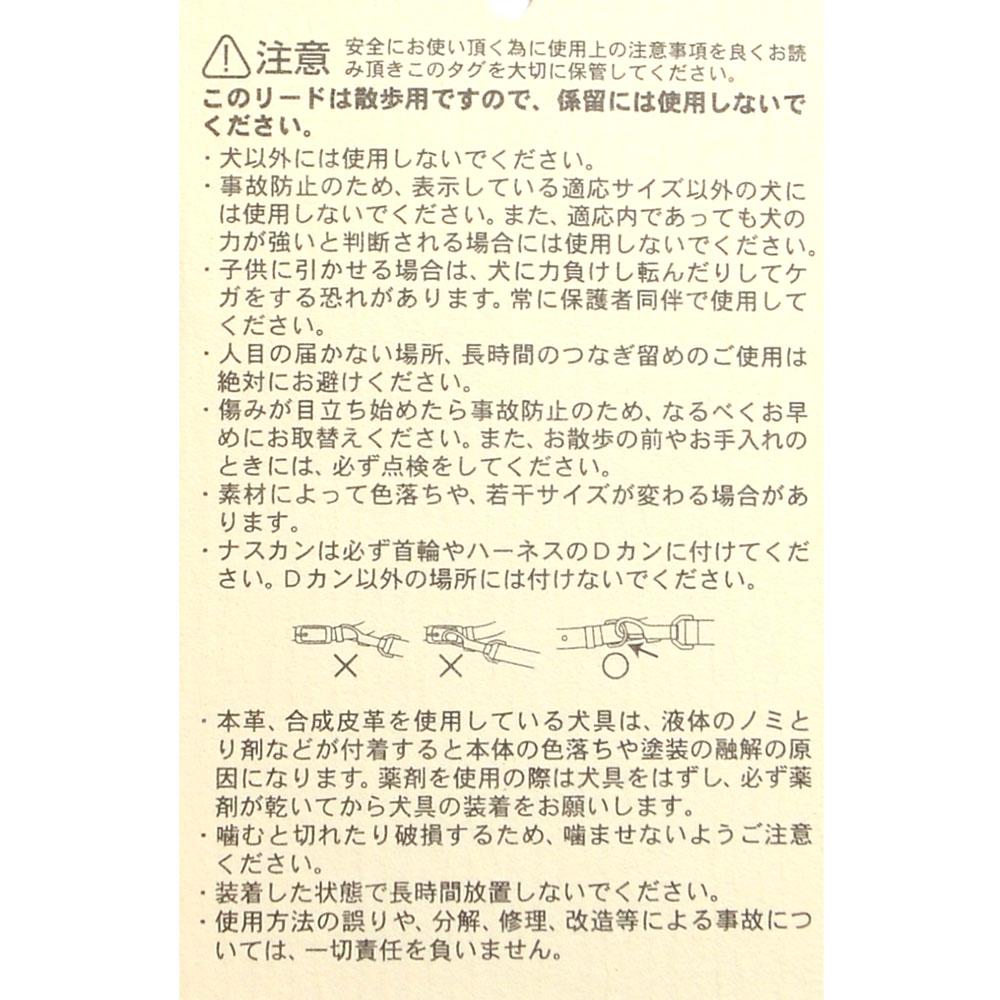 リード(シトラス)3S 627-96733 LG