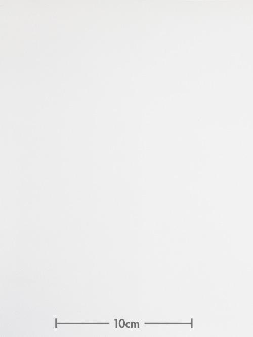 牛革【各サイズ】抗菌/エリート/ホワイト