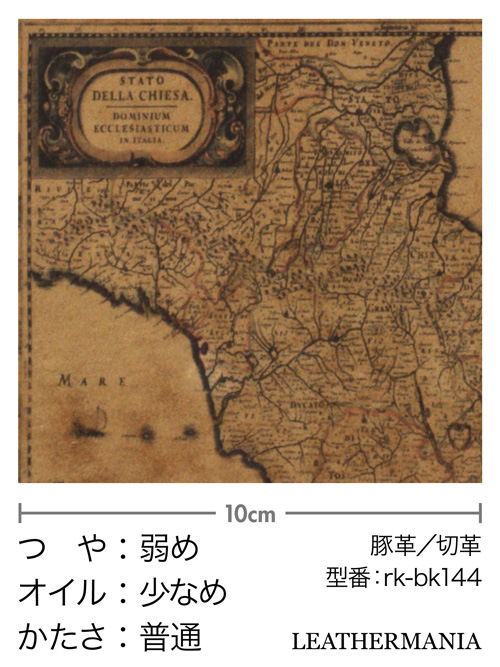 ピッグスエード【各サイズ】プリント(地図柄)/キャメル [ポイント5倍]