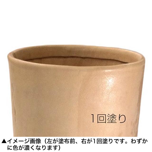 カタメール/透明【250ml】 [SEIWA]