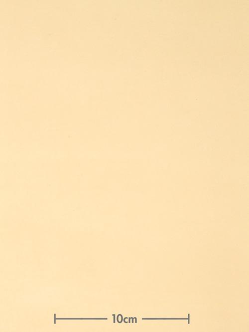 牛ヌメ革【各サイズ】フランスヌメ/カゼイン仕上げ/ナチュラル [ポイント10倍]