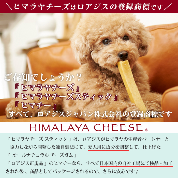 単品 Semi Lサイズ ヒマラヤチーズ スティック / 規格外だからチョット割引♪  ※2本ご購入で送料無料!