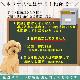 ★ 送料無料 ★ クラニマルズ(オリジナル) 愛犬用オーガニック クランベリーサプリメント 〜 尿路・肝機能の病気予防に 〜 (賞味期限2022年2月) ※ネコポス便でポストに届きます♪