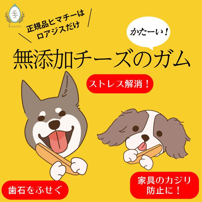 6本 Mサイズ ★バリューパック★  【送料無料セット】 ヒマラヤチーズ スティック みんな大好きヒマチー♪