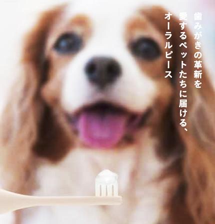 ★創業祭スペシャル★ ビューティーセレクト セット (歯磨きジェル & ミントのフレグランス スプレー)