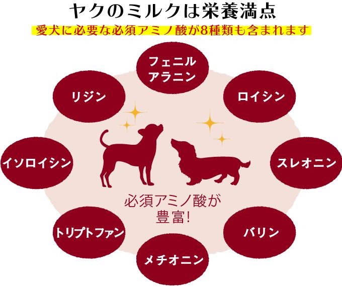 ★Lサイズ2本セット★【送料無料】ヒマラヤチーズ スティック みんな大好きヒマチー♪