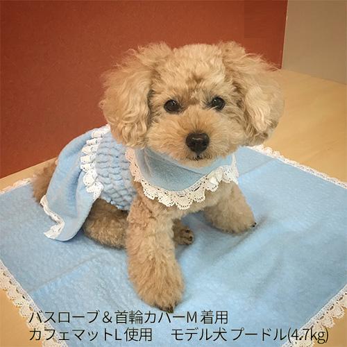 カフェマット (Lサイズ 600×600mm) ふわふわ 今治タオル製 ペット 犬 お出かけグッズ 日本製 コットン100% ★送料無料★