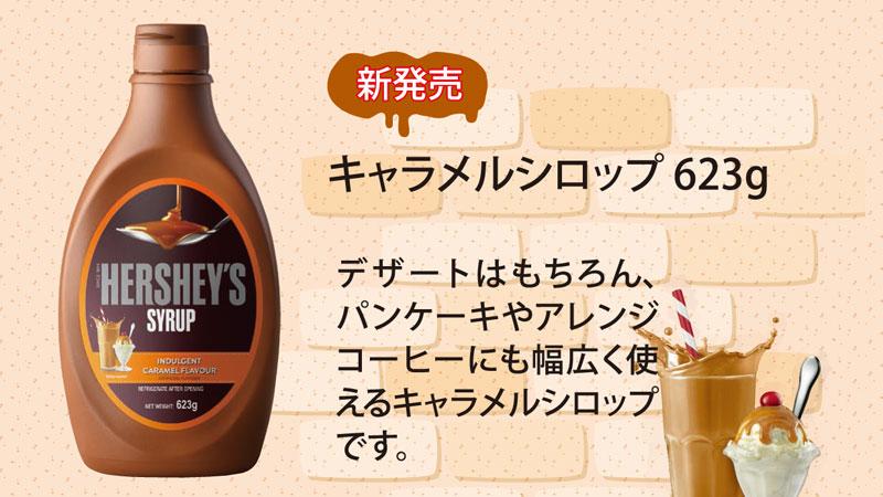 なんでもおいしく!万能シロップ【HERSHEY'S】ハーシー(チョコ/キャラメル)4本セット
