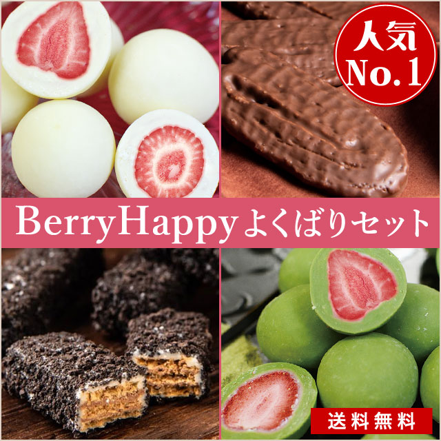 ベリーハッピーチョコレート/よくばり8箱セット【冷蔵送料無料】