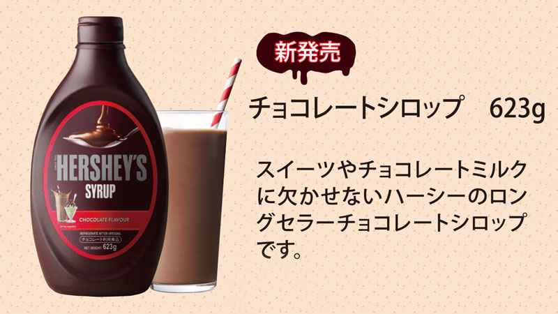 なんでもおいしく!万能シロップ【HERSHEY'S】ハーシー(チョコ)2本セット