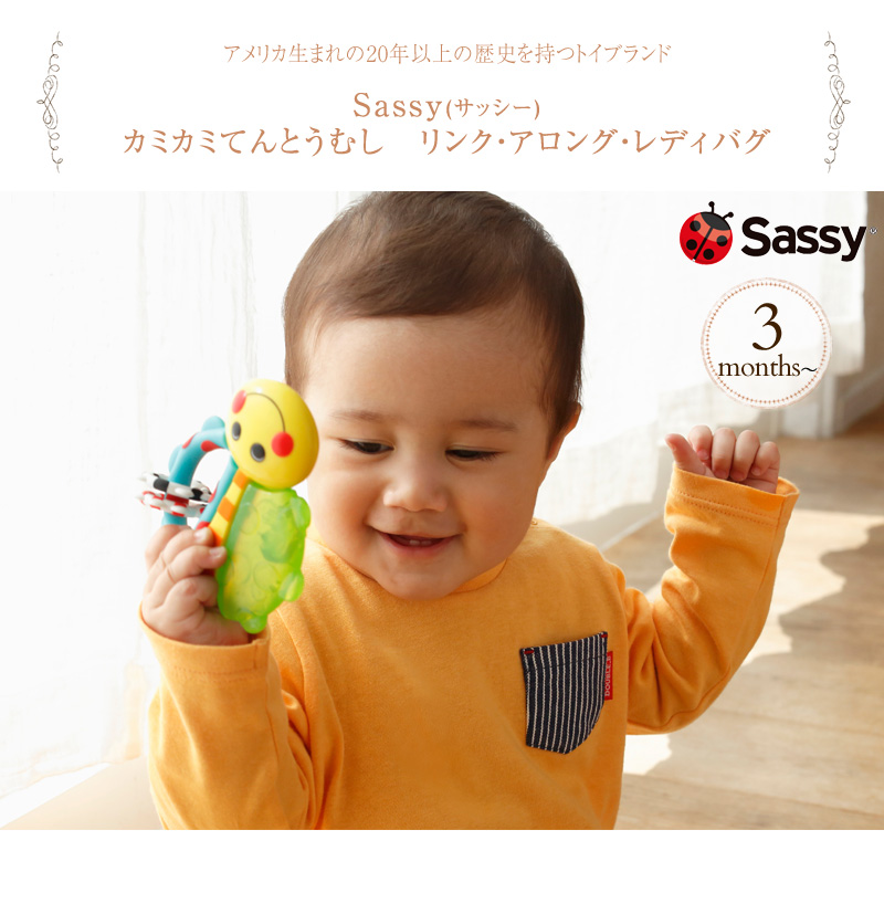 Sassy サッシー  カミカミてんとうむし リンク・アロング・レディバグ TYSA80746