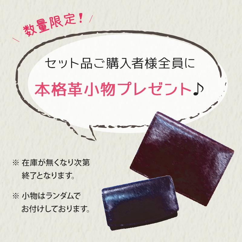 【Collonil】 バッグのお手入れ3点セット COL01 COL02 COL03