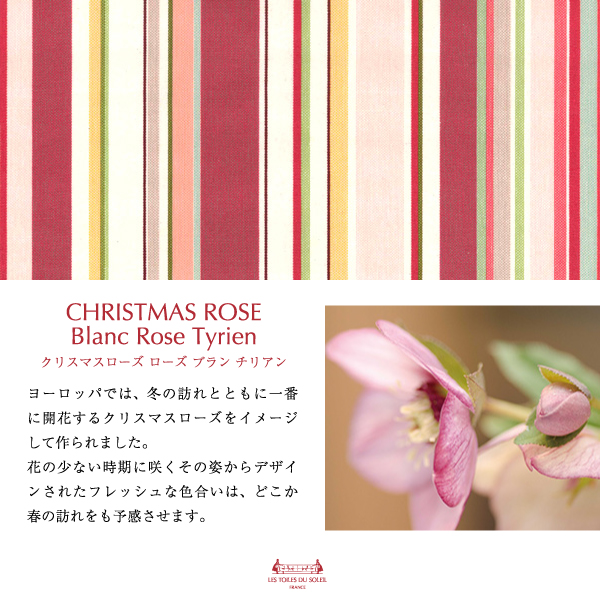 【YZ001】PVCトイレマット(クリスマスローズ ブラン ローズ チリアン/CHRISTMAS ROSE Blanc Rose Tyrien)