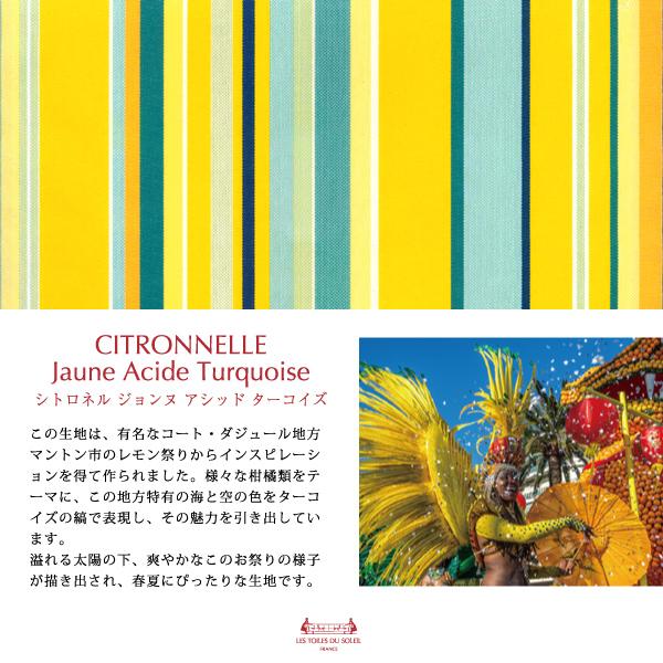 【TK005】三層立体マスク(シトロネル ジョンヌ アシッド ターコイズ/CITRONNELLE Jaune Acide Turquoise)