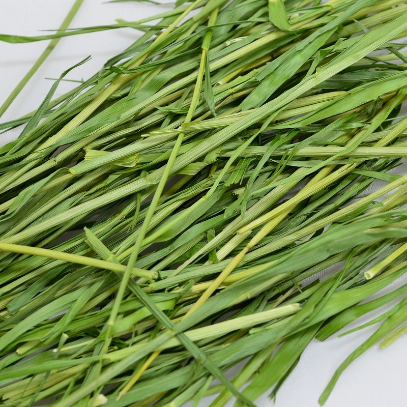 ウーリー 2021高原の朝採り牧草「麦」ヤング 450g ※2021年8月25日発売 ※1週間あたりお一人様2個まで